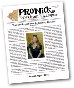 annual-report-pronica-thumbnail
